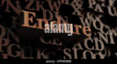 Endure - Wooden 3D rendered letters/message.  Can be used for an online banner ad or a print postcard. - Stock Photo