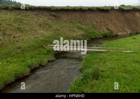 Felled trees as makeshift bridge over a small river - Stock Photo