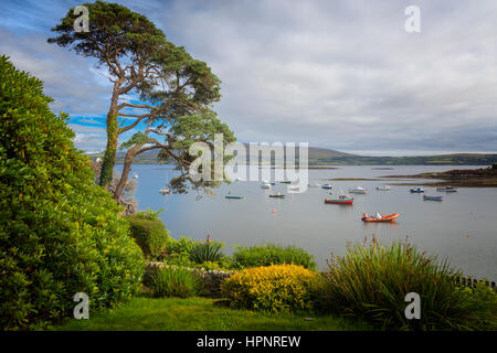 near Ahakista, on the Sheep's Head peninsula, County Cork, Republic of Ireland.  Eire.  View from the gardens of - Stock Photo
