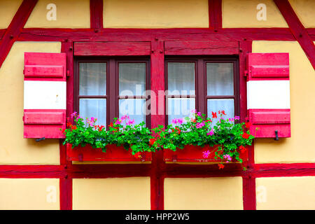 Windows of old house with flowers, Nurnberg, Germany - Stock Photo