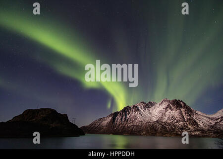 aurora borealis over Lofoten Islands, Norway, Europe - Stock Photo