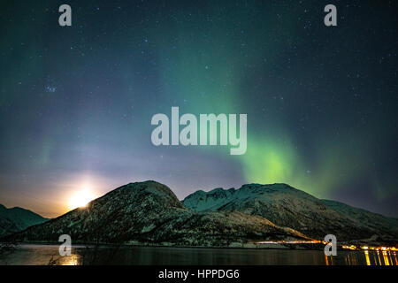 aurora borealis over Lofoten Islands, Norway, Europe - Stock Photo