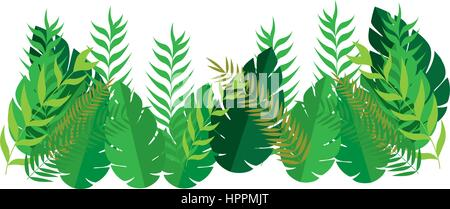 set collection diversity type leaves - Stock Photo