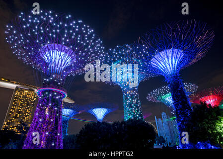 supertrees in the grounds of the gardens by the bay during ocbc garden rhapsody light - Garden By The Bay Event