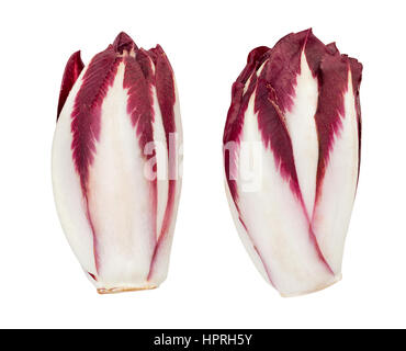 red chicory isolated - Stock Photo