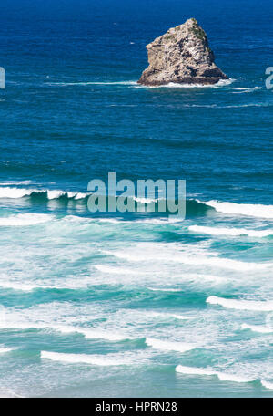 Dunedin, Otago, New Zealand. View over the Pacific Ocean to the rocky islet of Lion's Head, Sandfly Bay, Otago Peninsula. - Stock Photo