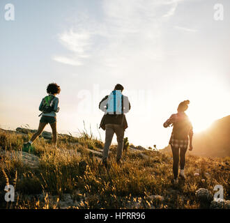 Rear view shot of young people hiking in nature on a summer day. Three young friends on a country walk. - Stock Photo