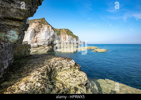 Dramatic chalk cliffs at Thornwick bay, Flamborough on a beautiful, sunny September day. - Stock Photo