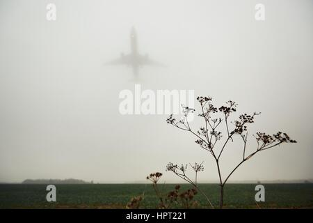 The airplane is landing during bad weather in thick fog - Stock Photo