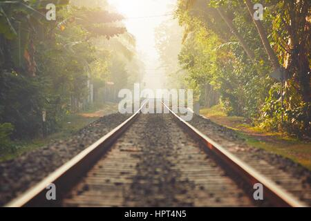 Foggy morning in Sri Lanka. Railroad track through the jungle and villages. - Stock Photo