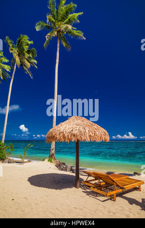 Two beach chairs under umbrella with palm trees, Samoa Islands - Stock Photo