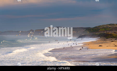 Surf rolling in on a beach near Monterey, California, USA - Stock Photo