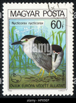 A postage stamp printed in Hungary  shows a bird  Nycticorax nycticorax, from series bird's nest, circa 1980 - Stock Photo