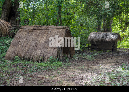 Typical house of vedda people living in Sri Lanka - Stock Photo
