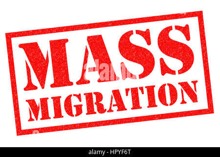 MASS MIGRATION red Rubber Stamp over a white background. - Stock Photo