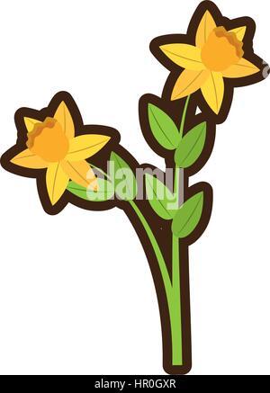 cartoon daffodil flower spring floral - Stock Photo