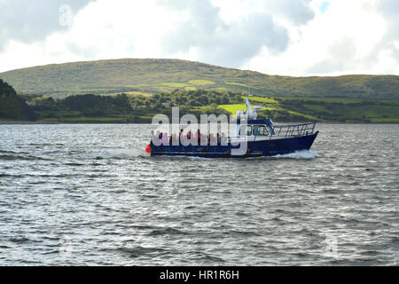 The Whiddy Island Ferry en route to Whiddy - Stock Photo