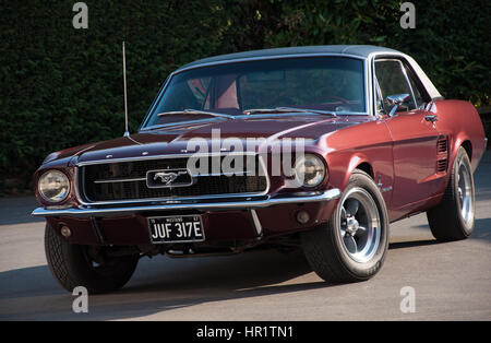 1967 classic Ford Mustang Coupe in Burgundy with Torque Thrust D wheels looking good in the sun - Stock Photo