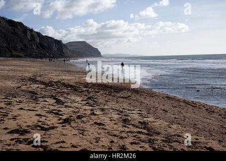 Looking east along the beach at Charmouth along the Jurassic Coast famous for the number of fossils found. - Stock Photo