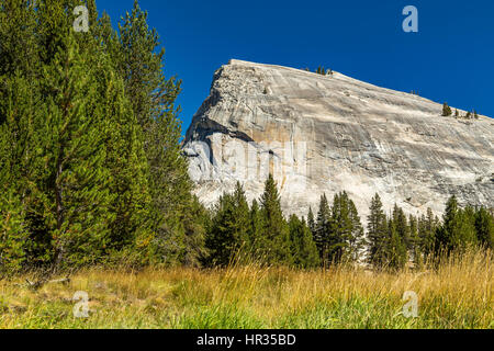 Lembert Dome is a granite dome rock formation in Yosemite National Park in the US state of California. The dome - Stock Photo