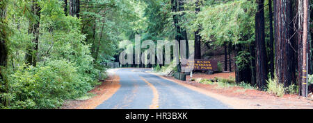 Road with road sign, Big Basin Redwoods State Park, California, USA - Stock Photo
