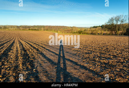 Shadow selfie at sundown on a ploughed and raked farm field in the Chiltern Hills - Stock Photo