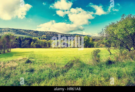 Agricultural meadow on hillside in morning light. Ferest in the background. Autumn mountain landscape. Majestic - Stock Photo
