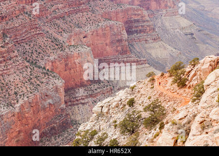 A lone backpacker heading up the south Kaibab trail on the Grand Canyon's south rim, Grand Canyon National Park, - Stock Photo