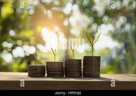 silver coin stack and tree in concept of growth business background. - Stock Photo