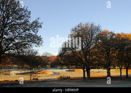 View from the 10th Fairway across to the 9th Green on a frosty autumn day Thorndon Park Golf Club, Brentwood, Essex - Stock Photo