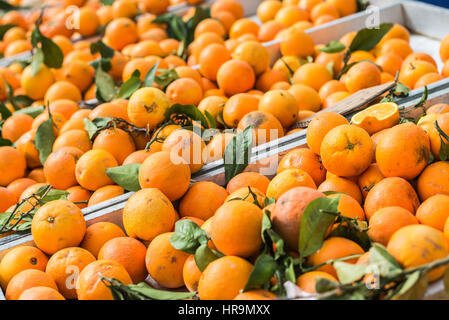 Sweet spanish oranges on local market - Stock Photo