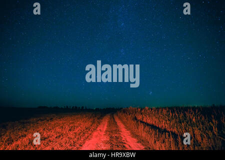 Blue Night Starry Sky Above Country Road In Countryside And Green Field. Night View Of Natural Glowing Stars. Red - Stock Photo
