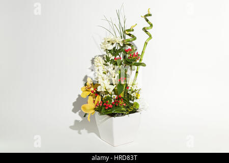 colorful floral bouquet of orchids, chrysanthemums,  and red hypericums  in vase isolated on white background - Stock Photo