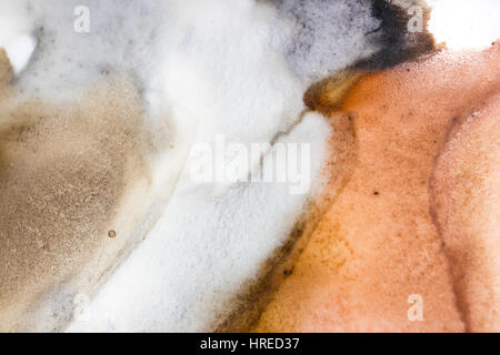 Watercolor Palette. Red, Yellow oak,cobalt blue,black,violet,purple,indigo.Close up and macro. - Stock Photo