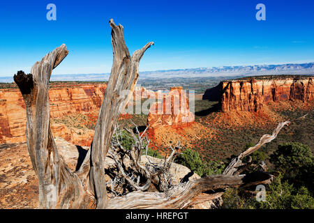 Colorado National Monument, Grand Junction, Colorado - Stock Photo