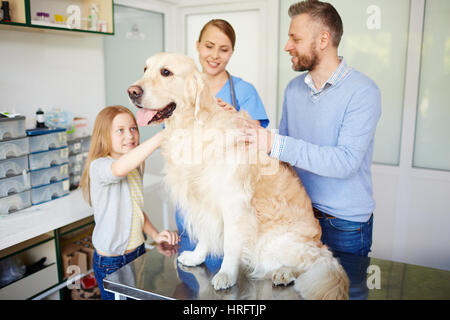 Father and daughter petting their beautiful fluffy dog while vet giving them diet and training recommendations - Stock Photo