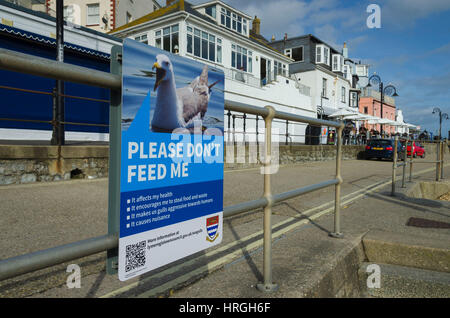 Lyme Regis, Dorset, UK. 2nd Mar, 2017. UK Weather. A don't feed the sea gull sign on Marine Parade on a beautiful - Stock Photo