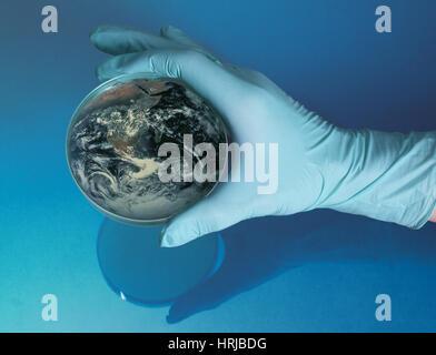 Earth Inside a Petri Dish - Stock Photo