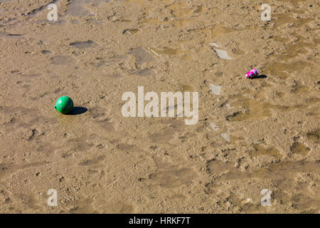 A green ball and a soft drink can stuck in the mud on the River Thames at Erith,Kent UK at low tide - Stock Photo