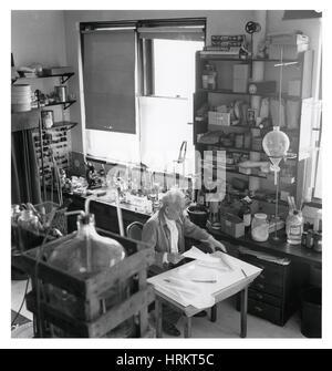 A. Szent-Gyorgyi, Hungarian-American Biochemist - Stock Photo