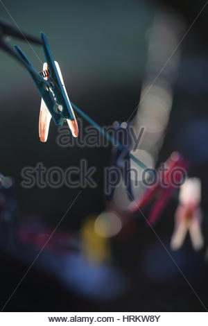 Clothes pegs on a washing line outdoors in the morning light - Stock Photo