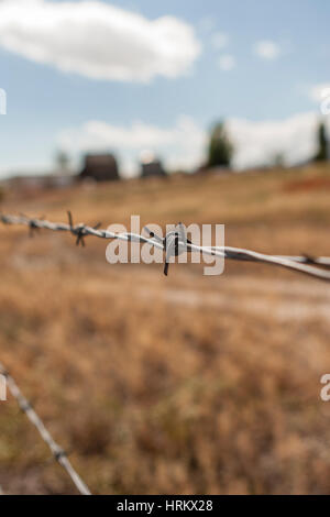 Barb wire fence with out of focus farm in background - Stock Photo