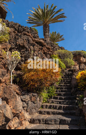 Jameos del Agua on the island Lanzarote, Canary Islands ,Spain - Stock Photo