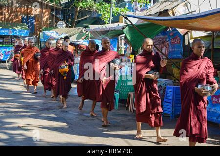 Monks on their morning alms rounds, Yangon, Myanmar. - Stock Photo