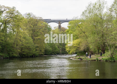 A man, woman and dog by the RIver Dee with walkers and a canal barge crossing the Pontcysyllte aqueduct in the background - Stock Photo