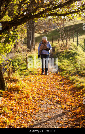 Woman walking along a track through autumn leafs in Dove Dale in the English Peak District - Stock Photo