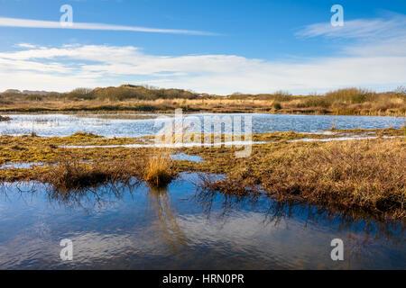 Pond at Braunton Burrows, Devon, England. - Stock Photo