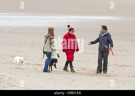 UK Weather, Crosby, Liverpool, Merseyside. Mar 3rd 2017.  Despite the cold grey weather over the North West of England, - Stock Photo