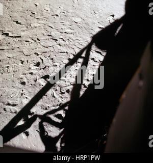 Shadow of Lunar Module, Apollo 11 - Stock Photo