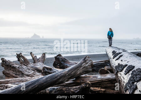 A woman standing at the end of a large driftwood log on Rialto Beach on a foggy overcast day, Olympic National Park, - Stock Photo
